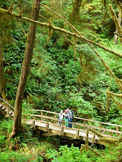 Pacific Rim National Park Reserve  / Schooner Trail P1070493