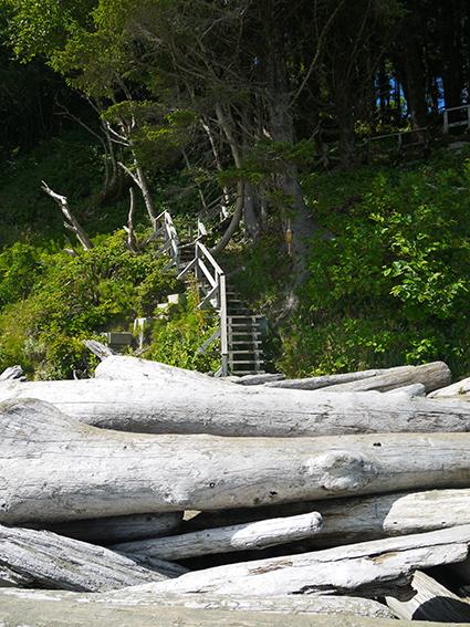 Pacific Rim National Park Reserve  / Schooner Trail P1070384
